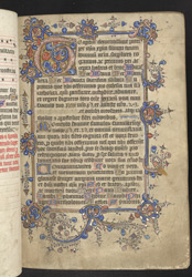 Illuminated Initial And Border, In A Manual f.35r